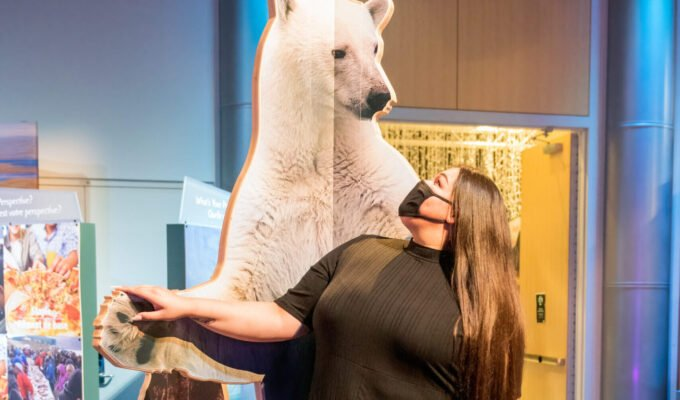 Journey Into the Arctic With Science World's Newest Feature Exhibition